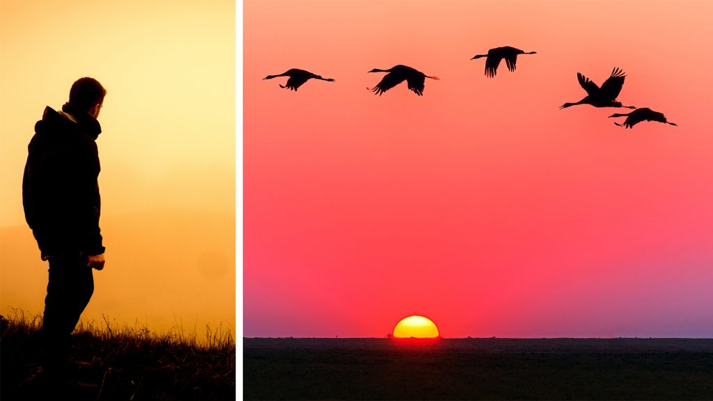 the-morning-sunrise